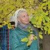 ЛАНА, 38, г.Москва